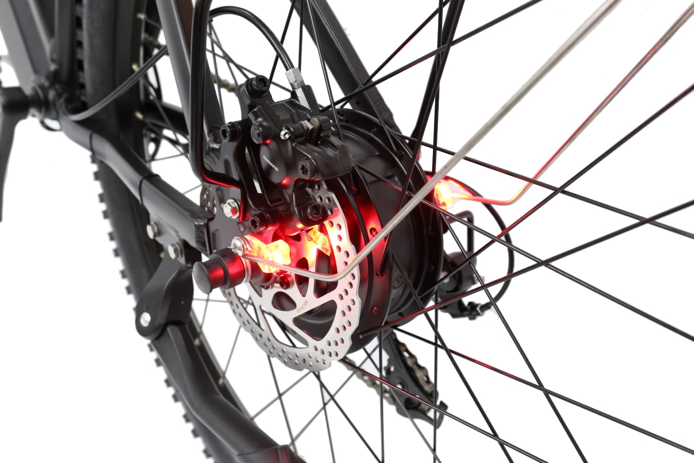 Weave Sport rear brake Light and Stand